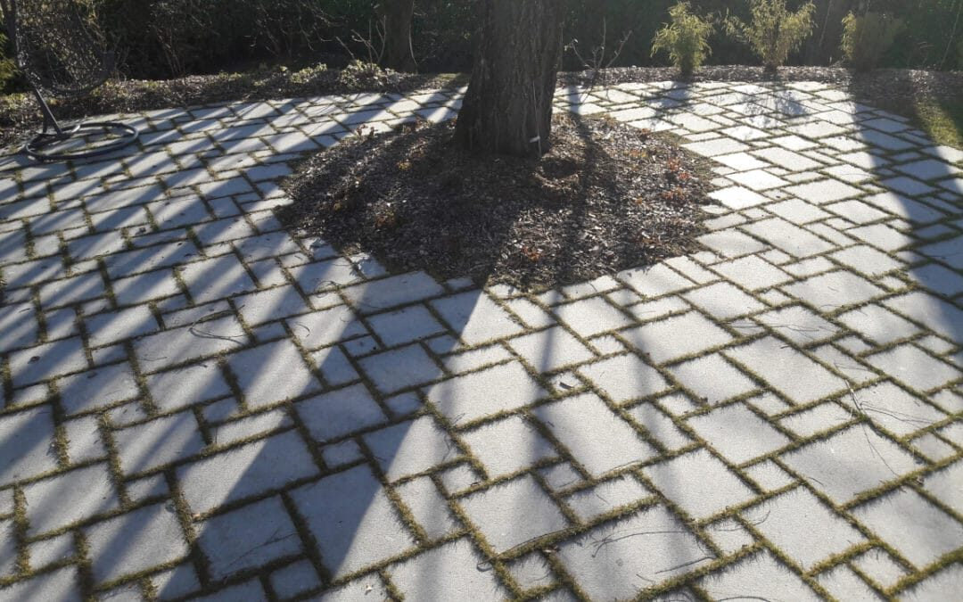 Terrasse en pierre naturelle par Noblema